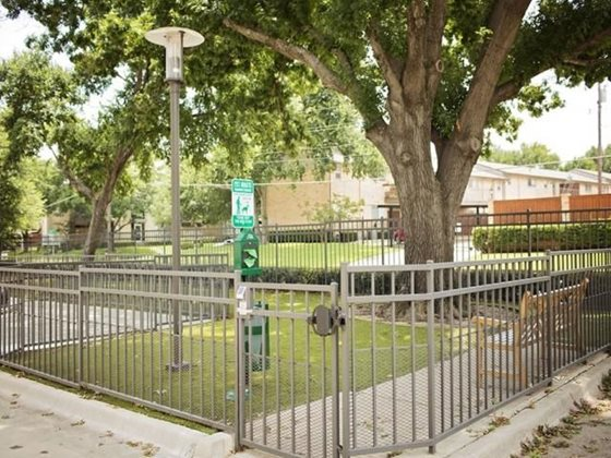 Dog Park Standard Dallas Tx Apartments For Rent Outdoor Decor Online Photo Gallery