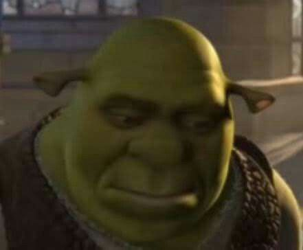 Pin By Armaneeh On Memes Meme Faces Shrek Stupid Memes