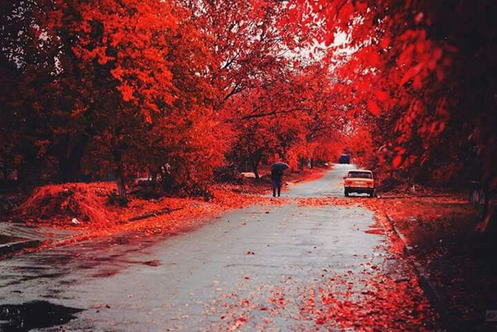 Red nature