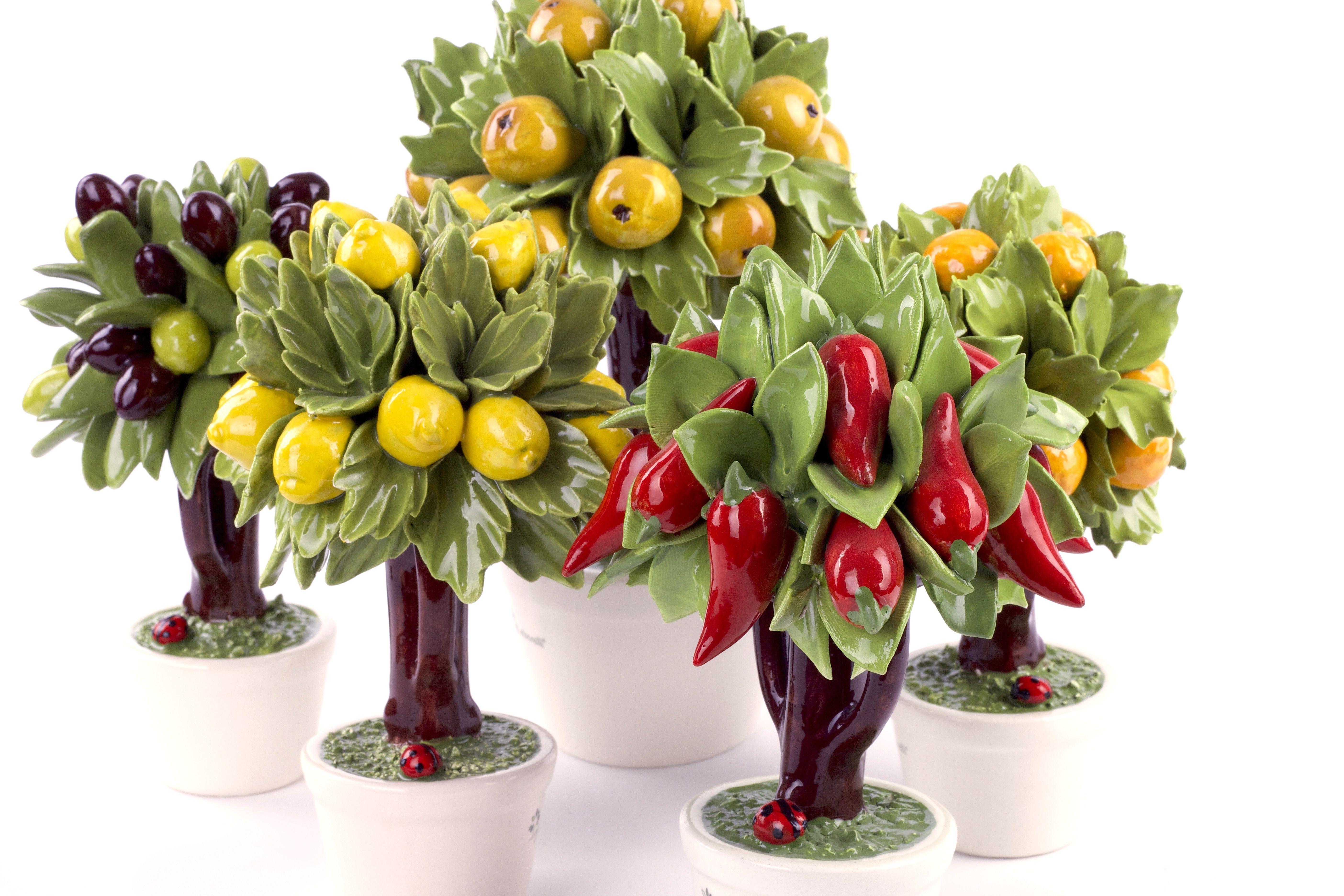 Giardino di alberelli gli alberelli pinterest for Alberelli per giardino