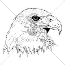Native American Eagle Symbol Meaning White Head Tattoo