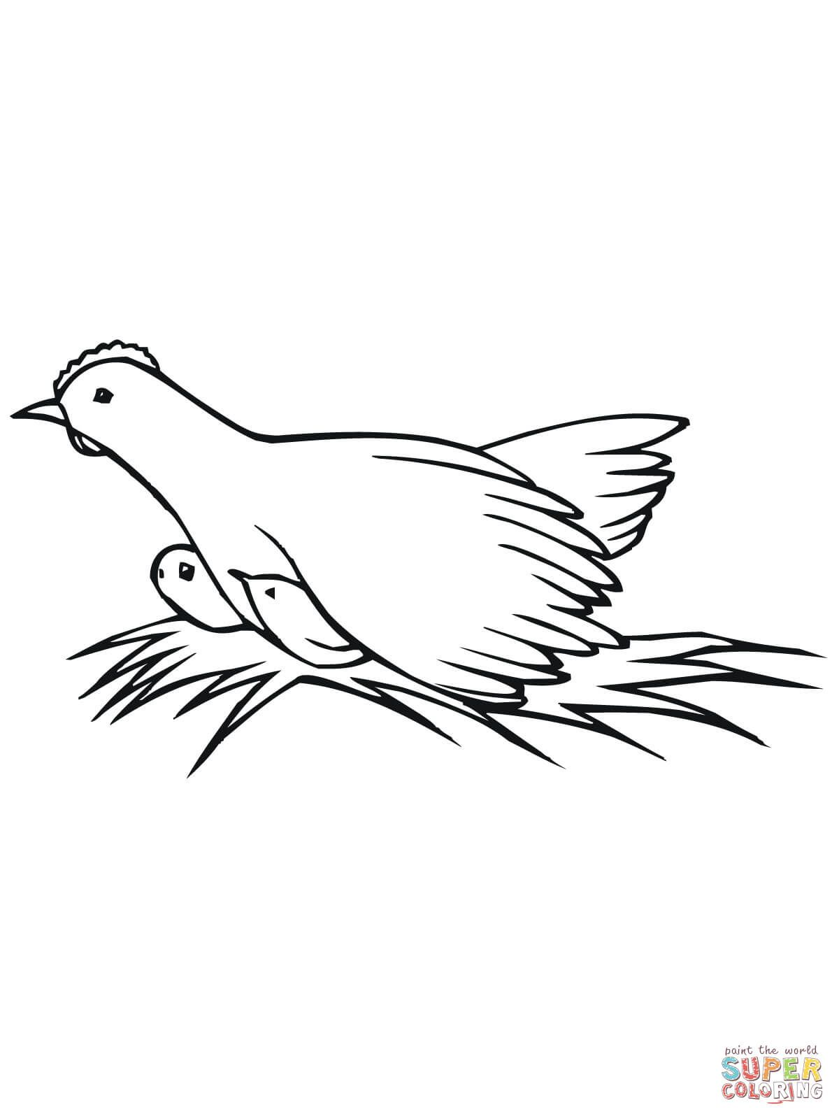 Hen On Nest With Chicks Coloring Page Free Printable Coloring