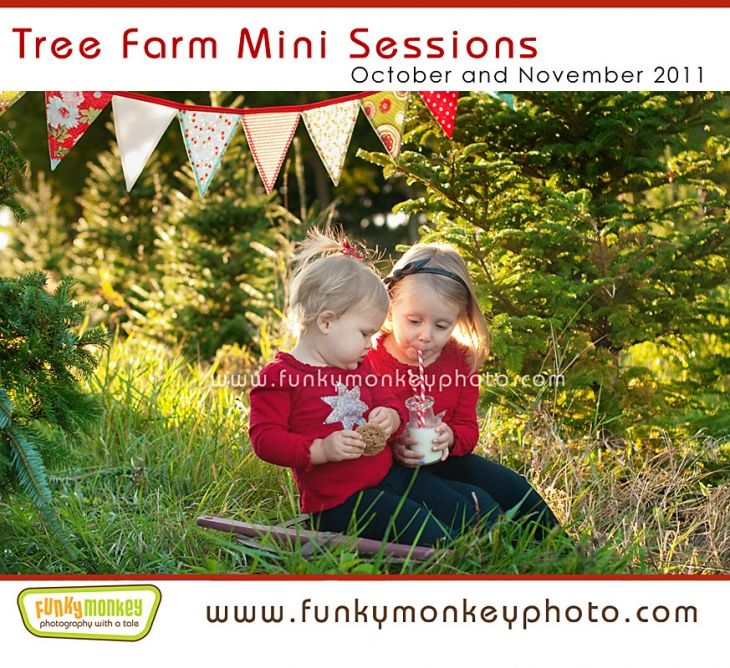 Children and Family Holiday Mini Session at the Tree Farm in Madison,  Wisconsin By Funky Monkey Photography Madison WI - Children And Family Holiday Mini Session At The Tree Farm In Madison