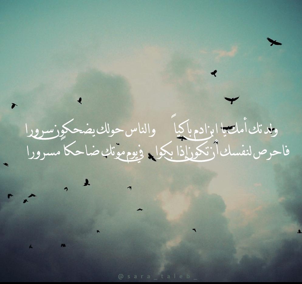 Pin On Arabic Quotes اقتباسات