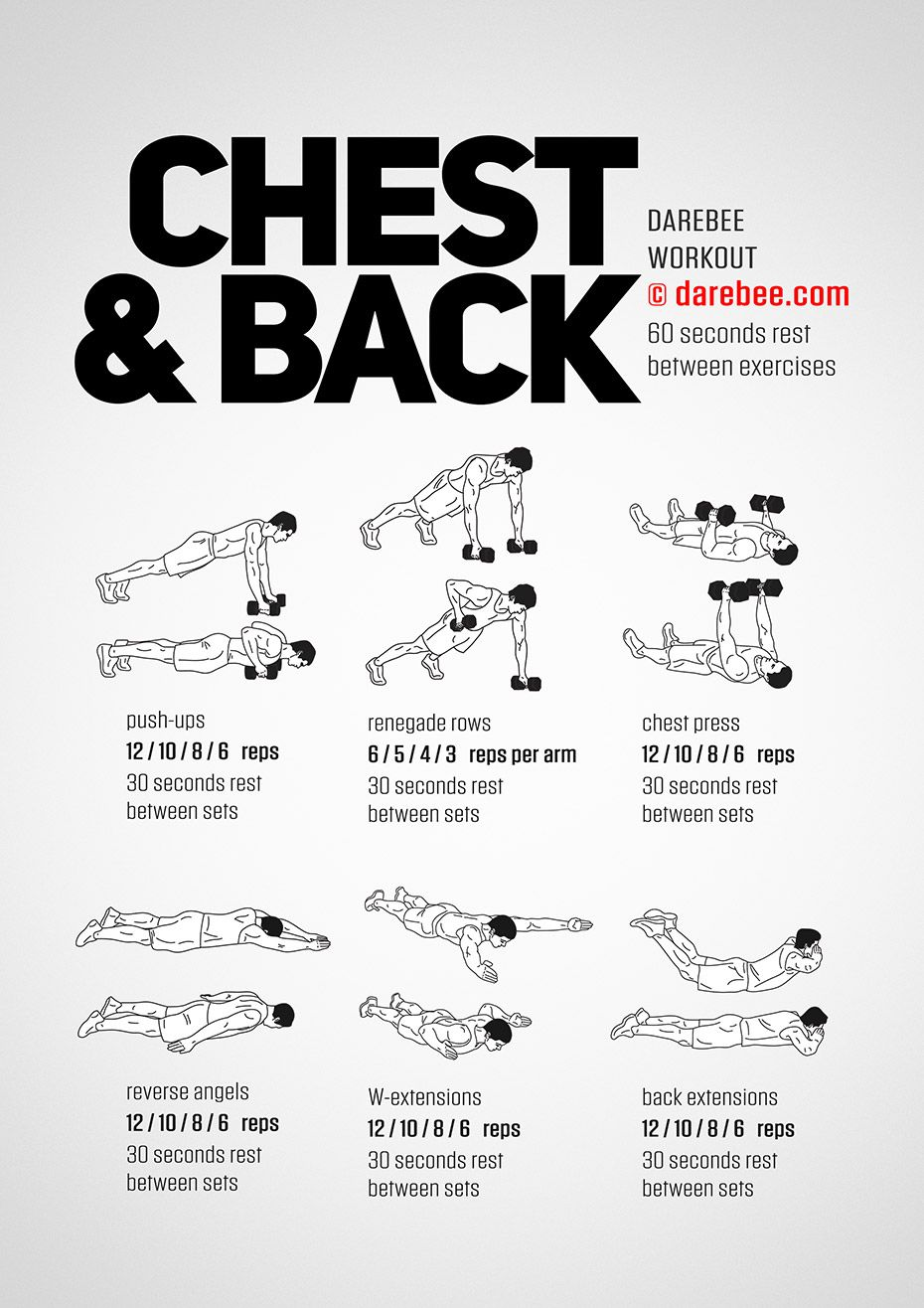 Chest Amp Back Workout Workout Bug Workout Chest Back