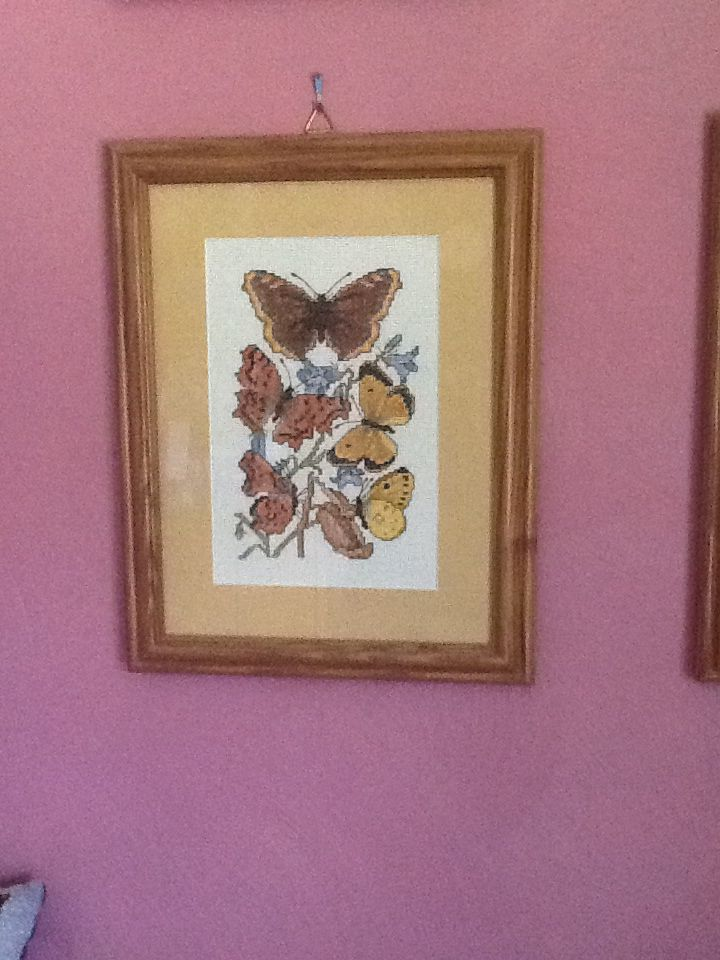 Butterflies. Counted cross stitched by Pauline.