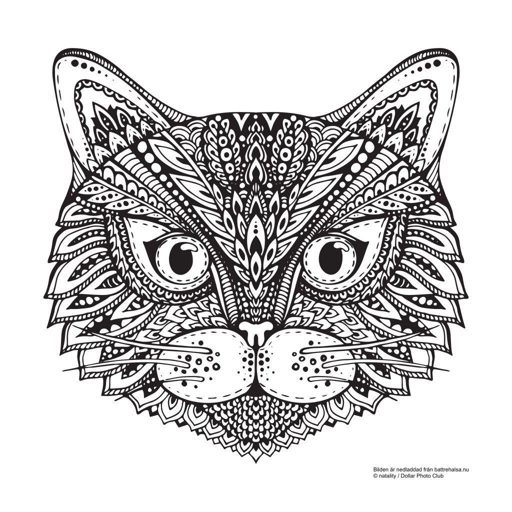 Katzen Ausmalbilder Online : Gratis M Larbild F R Vuxna H Vilken S T Katt Coloring 2