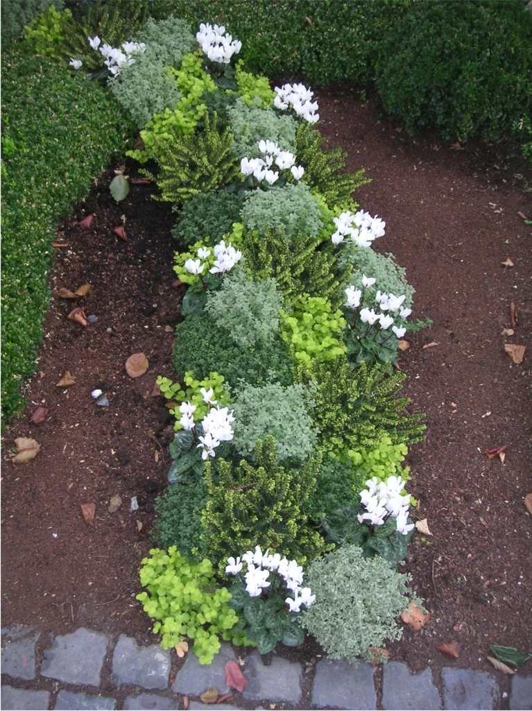 Grabgestaltungsideen | Grab | Pinterest Grabgestaltung Ideen Blumen Pflanzen Deko