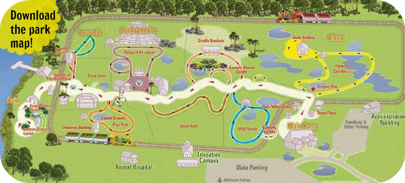Tips and Insights for the Jacksonville FL Zoo ...