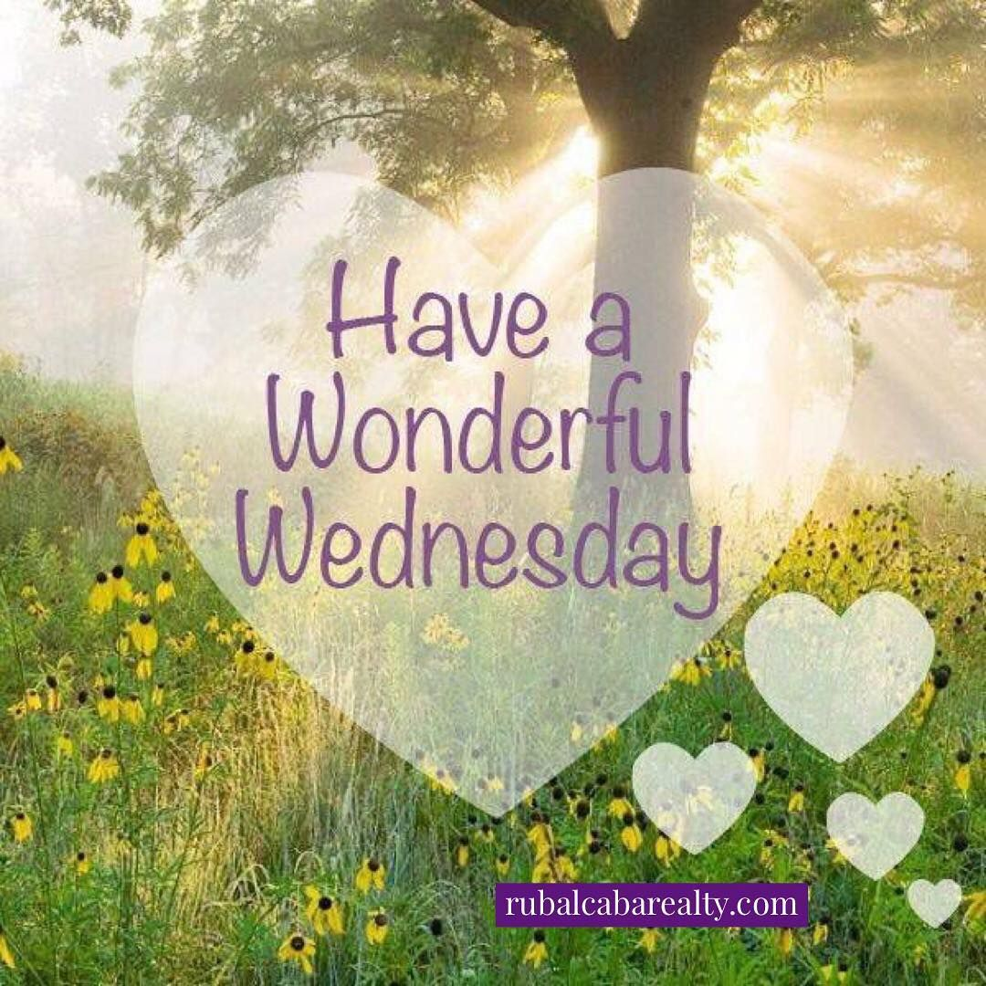 Have a great day! happy wednesday wednesdaywisdom