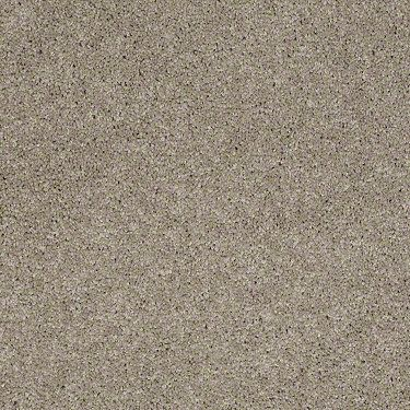 Carpet Exchange With Images Flooring Store Living Room Carpet Fort Collins
