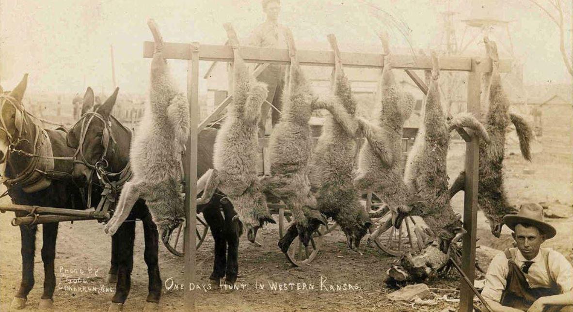 фото птерозавра с охотниками спирс поделилась подписчиками