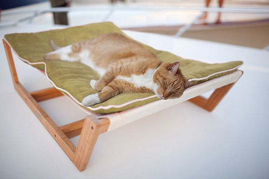 Moderncat.net is giving one lucky reader an eco-friendly Bambu Hammock from  Pet