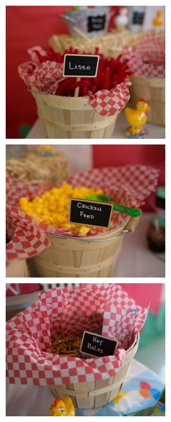 Farm Themed First Birthday Party | Animal Birthday Party | Pinterest ...