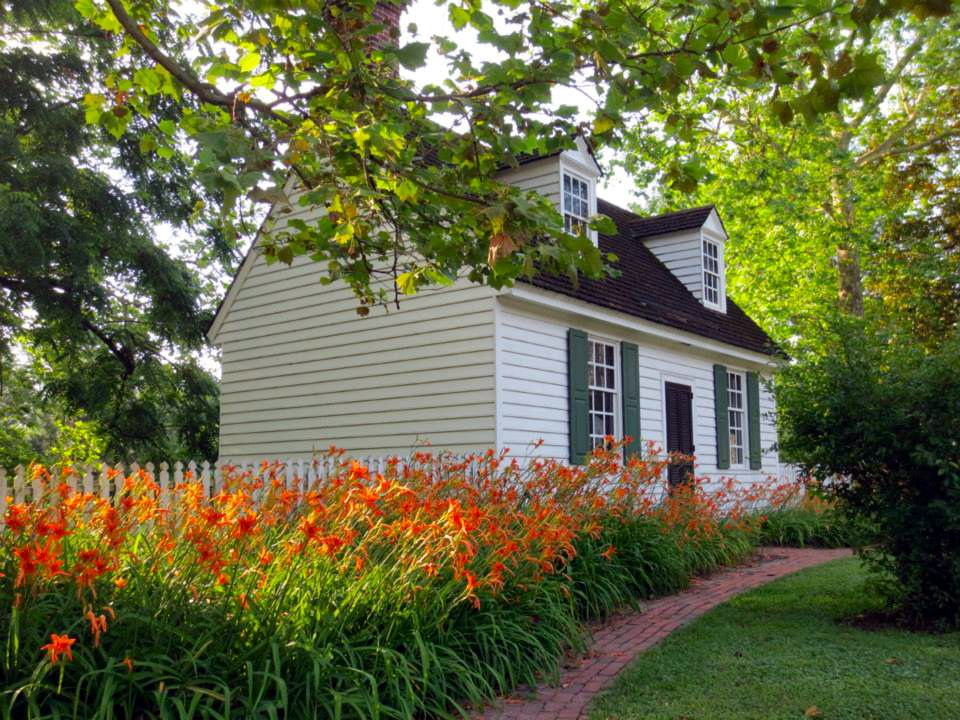 summer day lilies colonial williamsburg