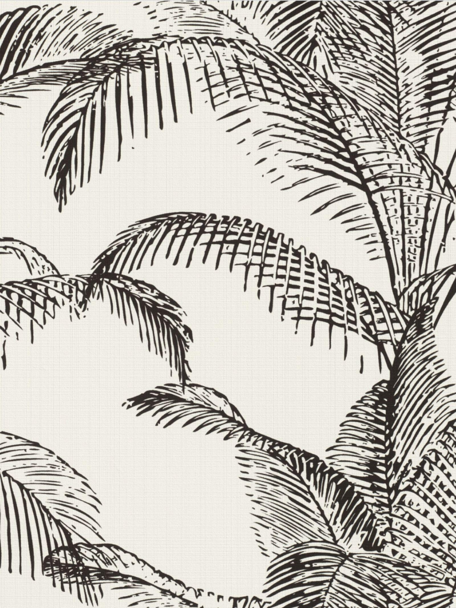 Pandore Palm Leaves Wallpaper White Black Rasch 406801 壁紙 カタログ リフォーム 壁紙 壁紙