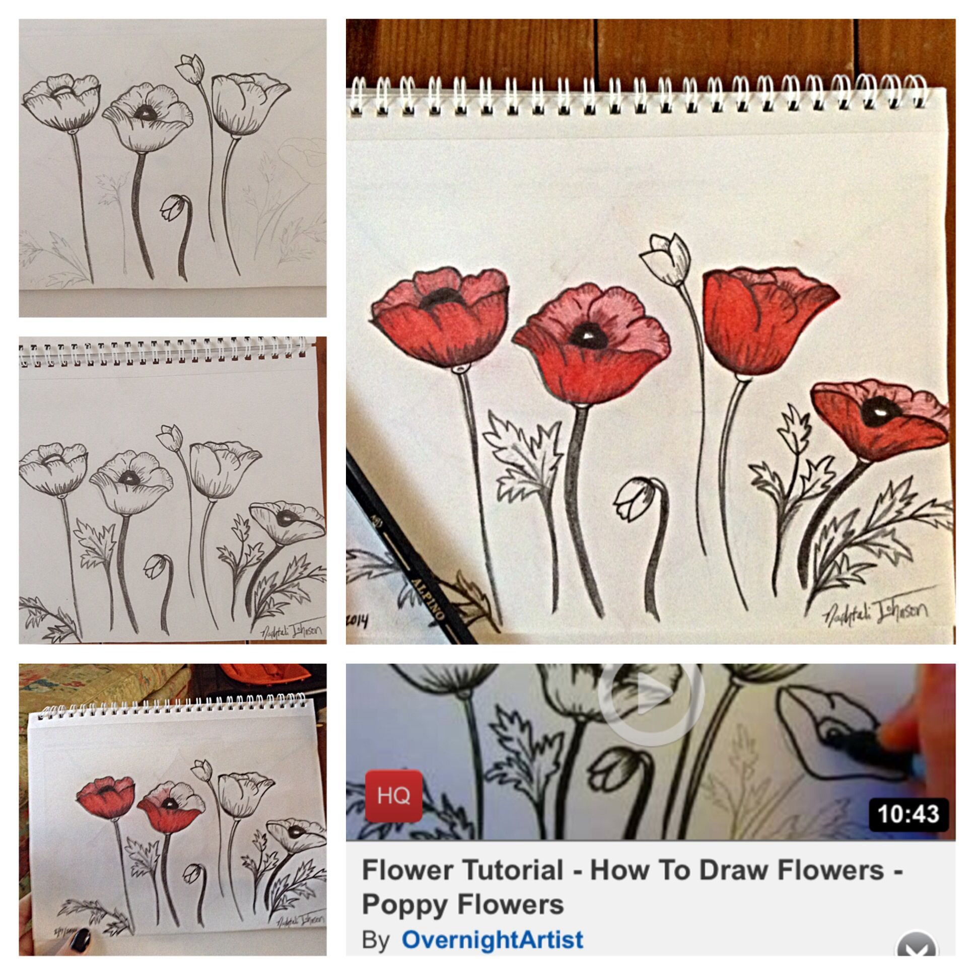 I found a youtube video tutorial on how to draw poppy flowers so i i found a youtube video tutorial on how to draw poppy flowers so i followed mightylinksfo