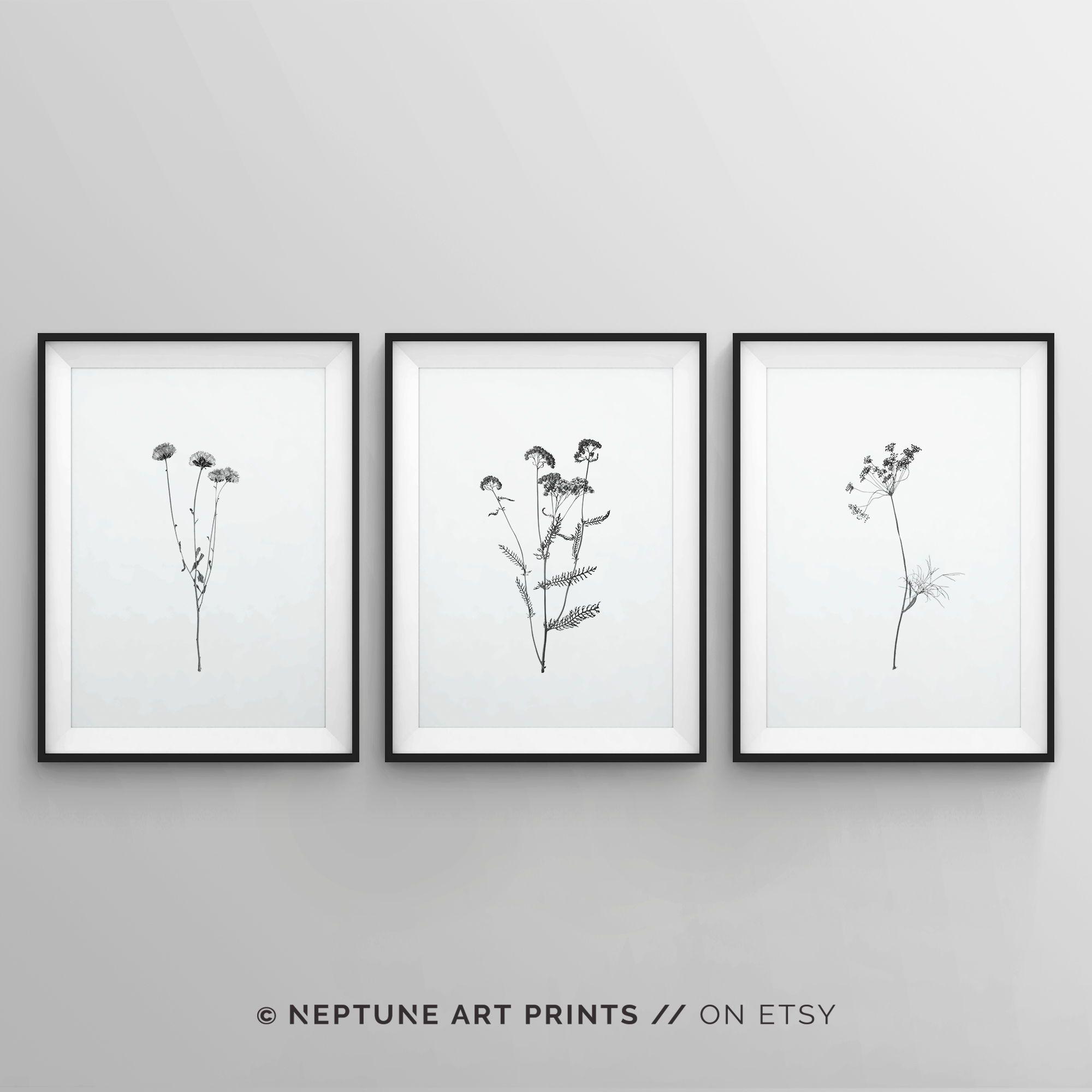 Set Of 3 Black And White Art Prints Minimalist Wall Art Prints Modern Floral Flowers Poster Set 3 Piece Wall Decor Plants Zen Peace In 2020 Minimalist Wall Art Wall Art