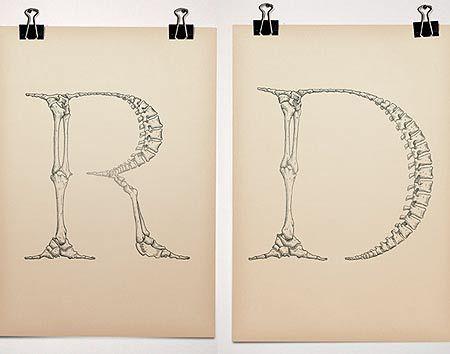2 dibujos de letras. Estas letras están hechas con un esqueleto de huesos humanos.