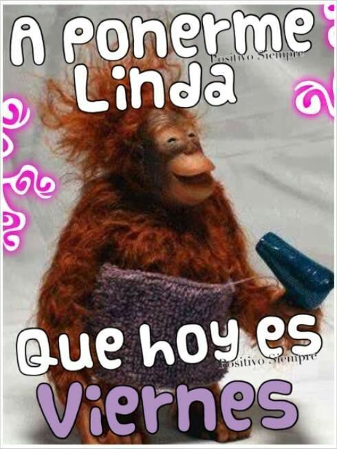 Hoy Es Viernes Quotes Pinterest Humor Funny Y Frases