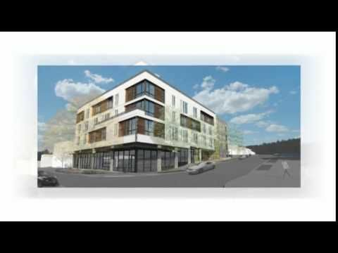 Vibe Fremont Apartments For Rent In Seattle Wa Dog Friendly Apartments Fremont Dog Insurance