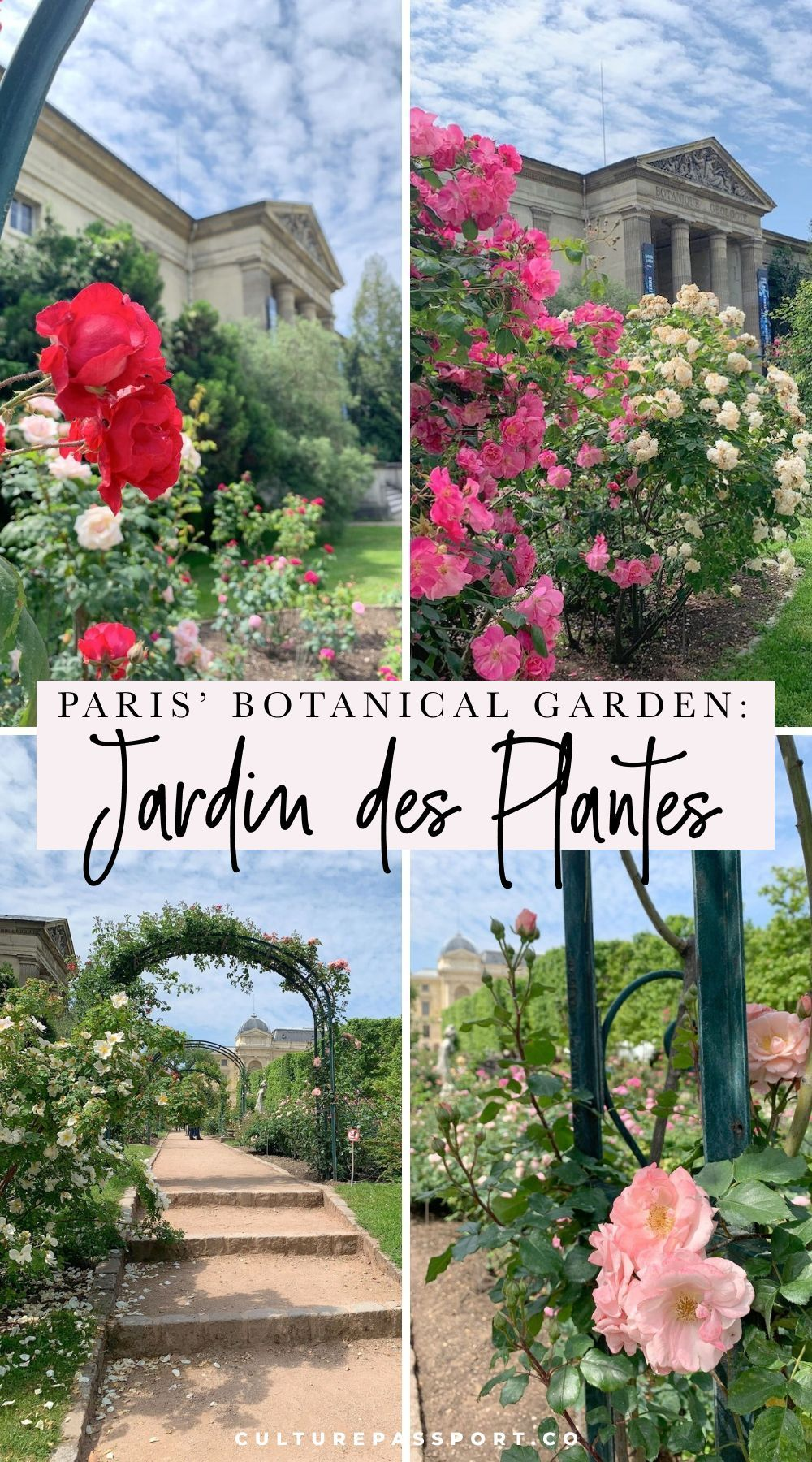 Jardin Des Plantes With Images Botanical Gardens Botanical Paris