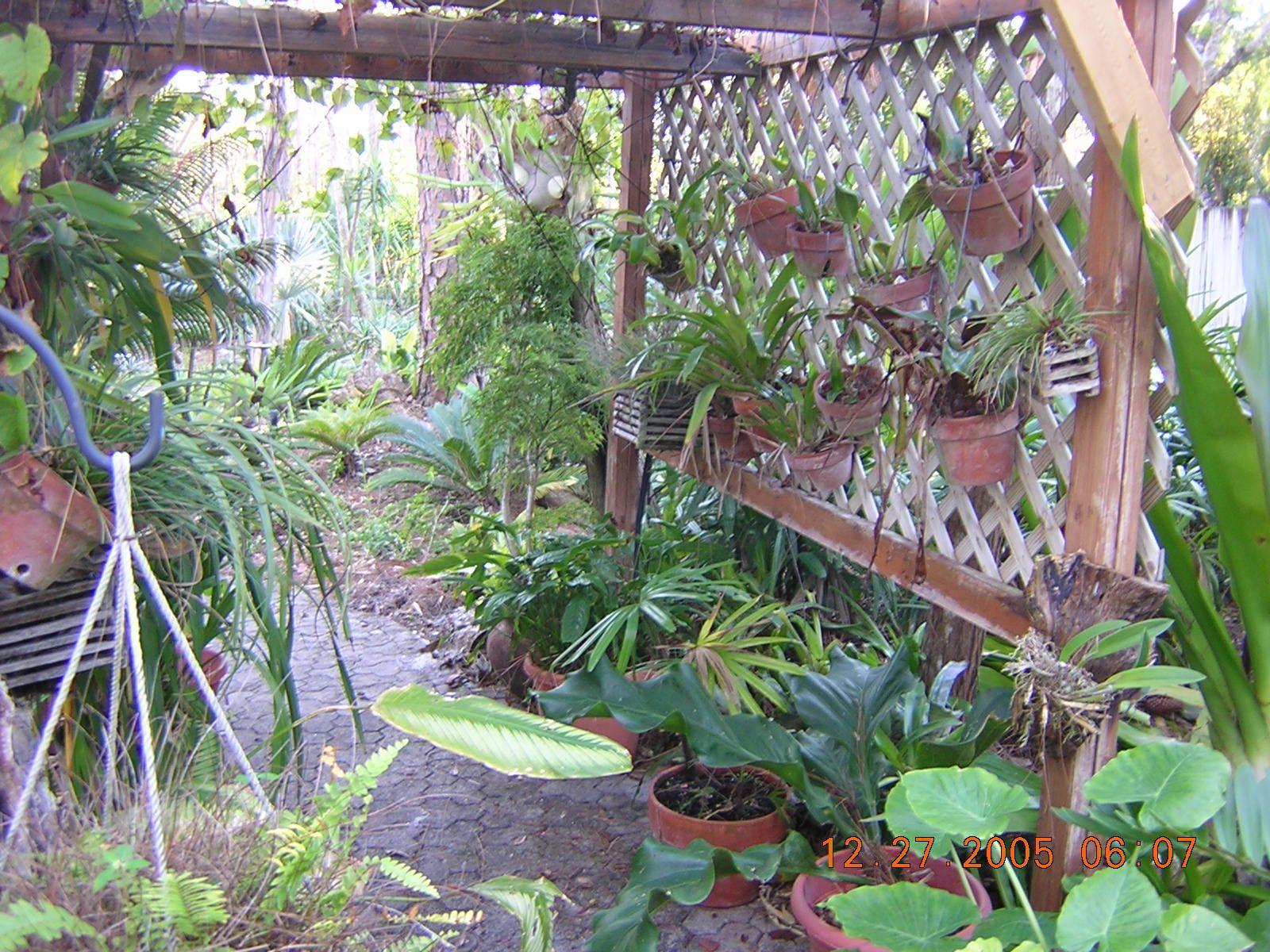 a87b04c2f785aa9ed8eac407a67a8e30 - The Tavern Orchid Gardens Room Rates
