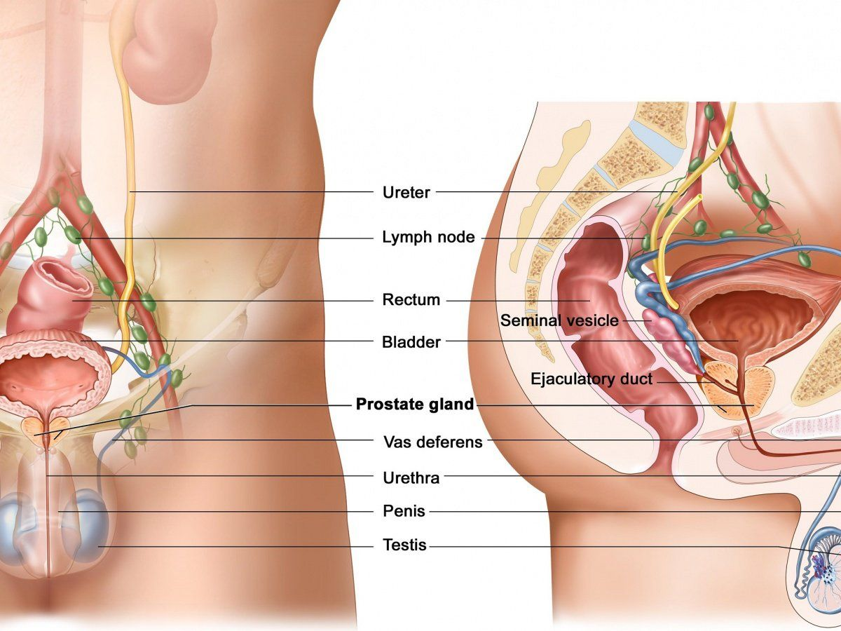 Chinese herbal treatments for prostate cancer metastisis to - Achieving Success With Your Blogging Online Testicular Cancerprostate