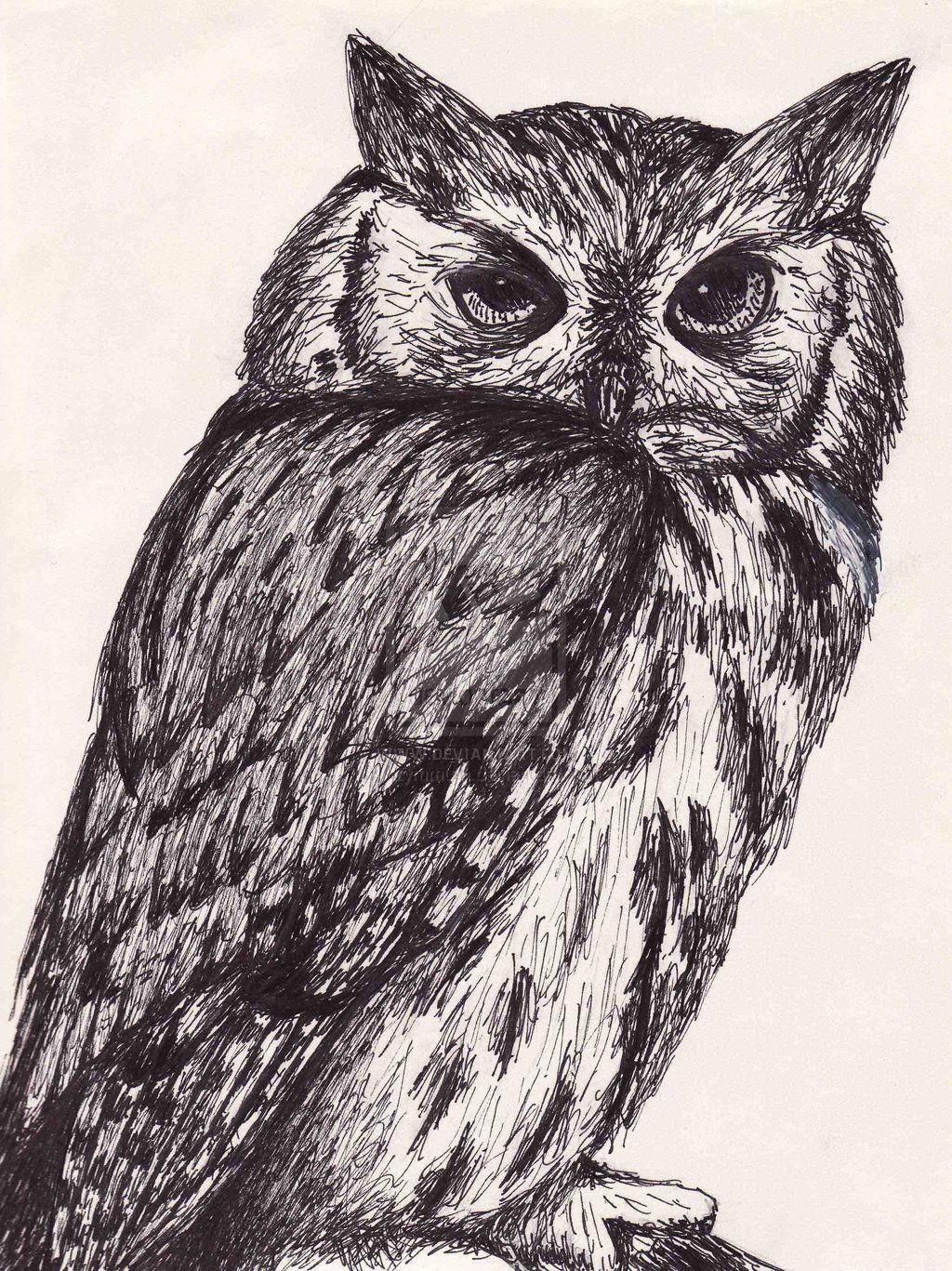 Animal Ink Drawings