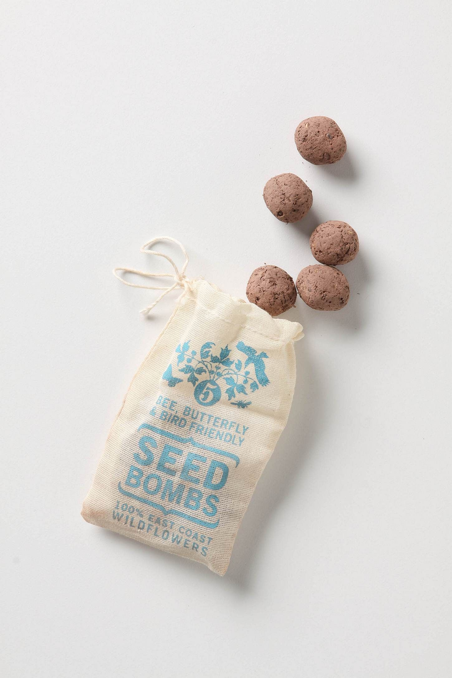 Seed Bombs - East Coast: includes baby blue eyes, baby\'s breath ...