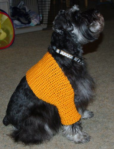 Crochet a Spring Sweater for Your Dog - free patterns ...