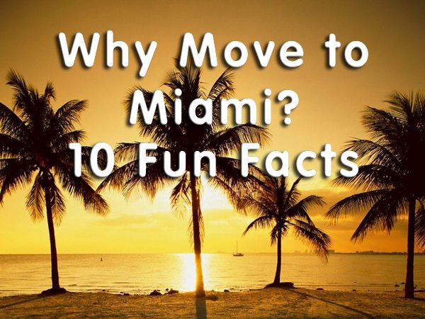 Why Move To Miami Fun Facts MIAMI N W - 10 cool facts about miami beach