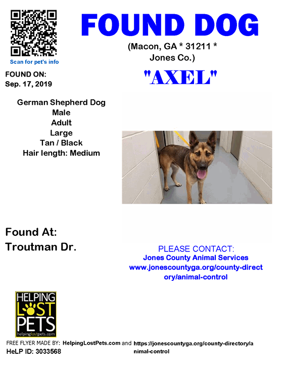 Pin By Lost Dogs Georgia On 2019 Dogs Found In Georgia Shepherd Dog Dogs German Shepherd Dogs