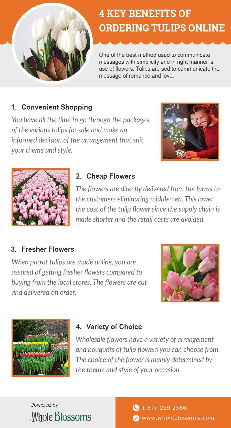 Get Key Benefits Of Ordering Fresh Tulips Online Black Tulip Flowers Tulips For Sale Fresh Tulips