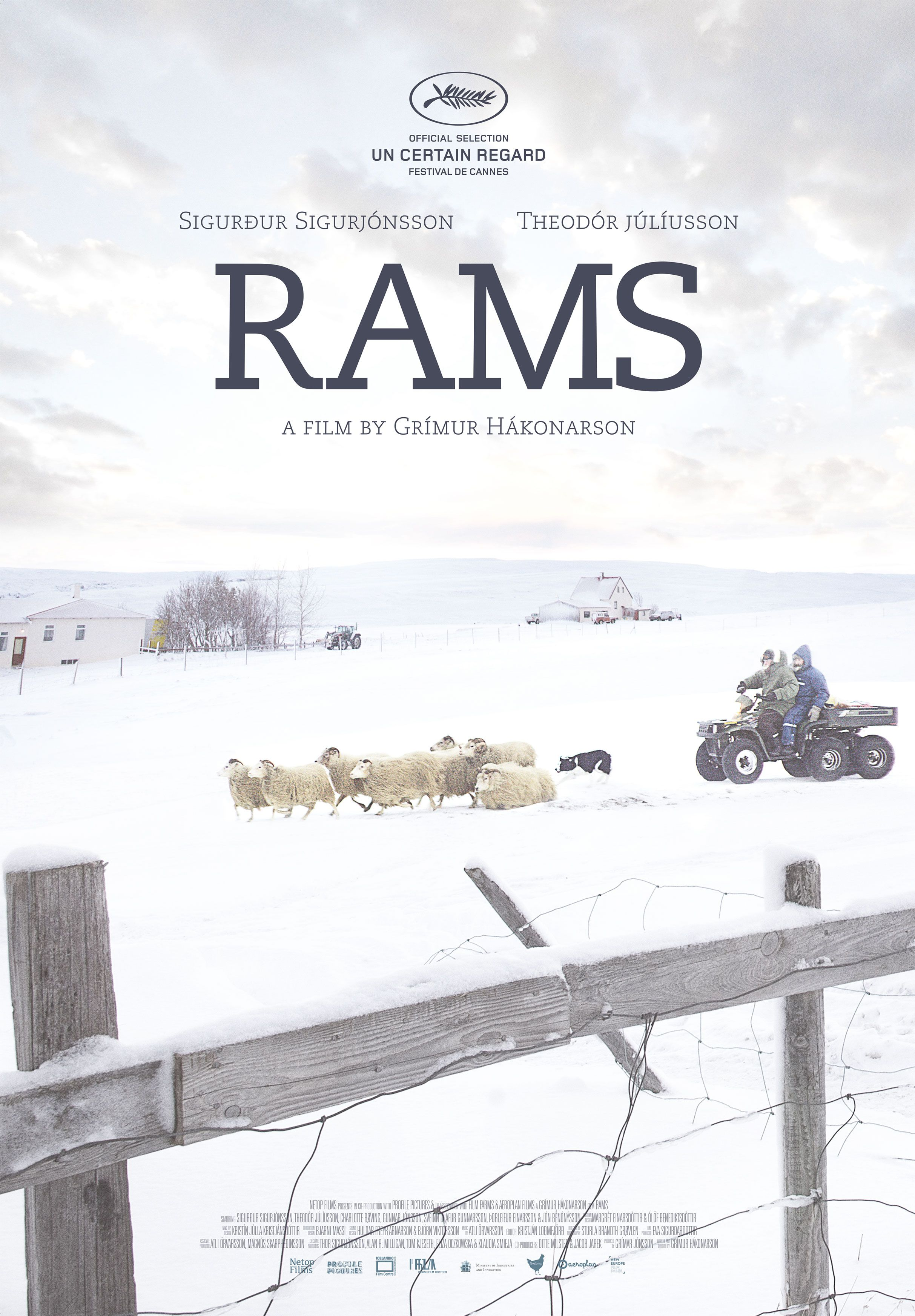 A Touching Film About Brotherly Love Life Of Scandinavian Shepherds With Monumental Icelandic Nature In The Background Film Big Movie Posters Cannes