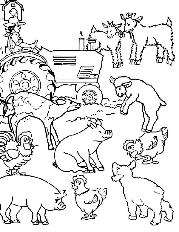 Cartoon Farm Animal Coloring Page Clip and Color part two