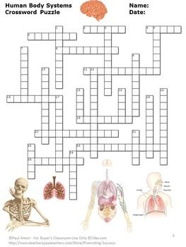 Human Body Systems Crossword Puzzle Science Distance Learning Packet Digital Human Body Systems Body Systems Human Body Systems Activities