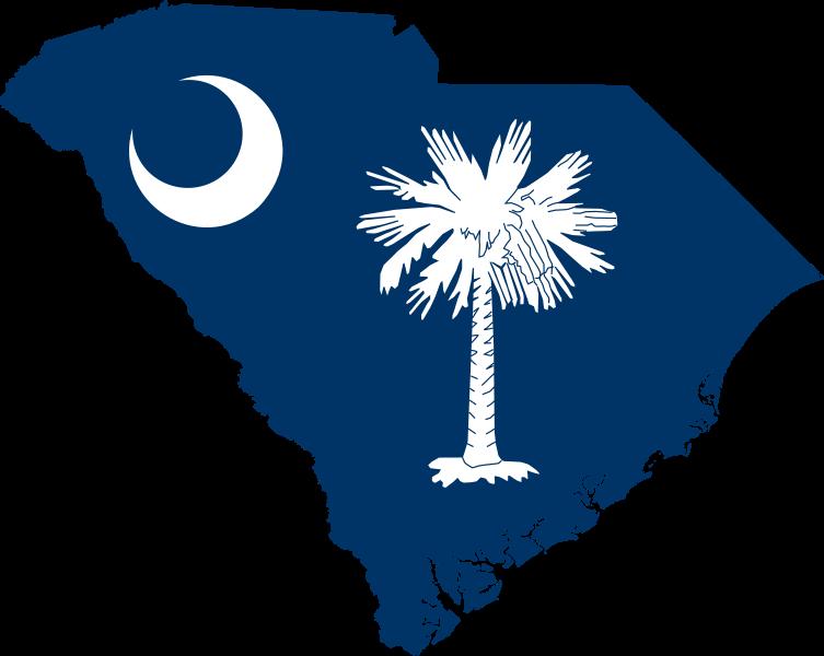 South Carolina South Carolina Tattoo South Carolina State Flag Palmetto Tree