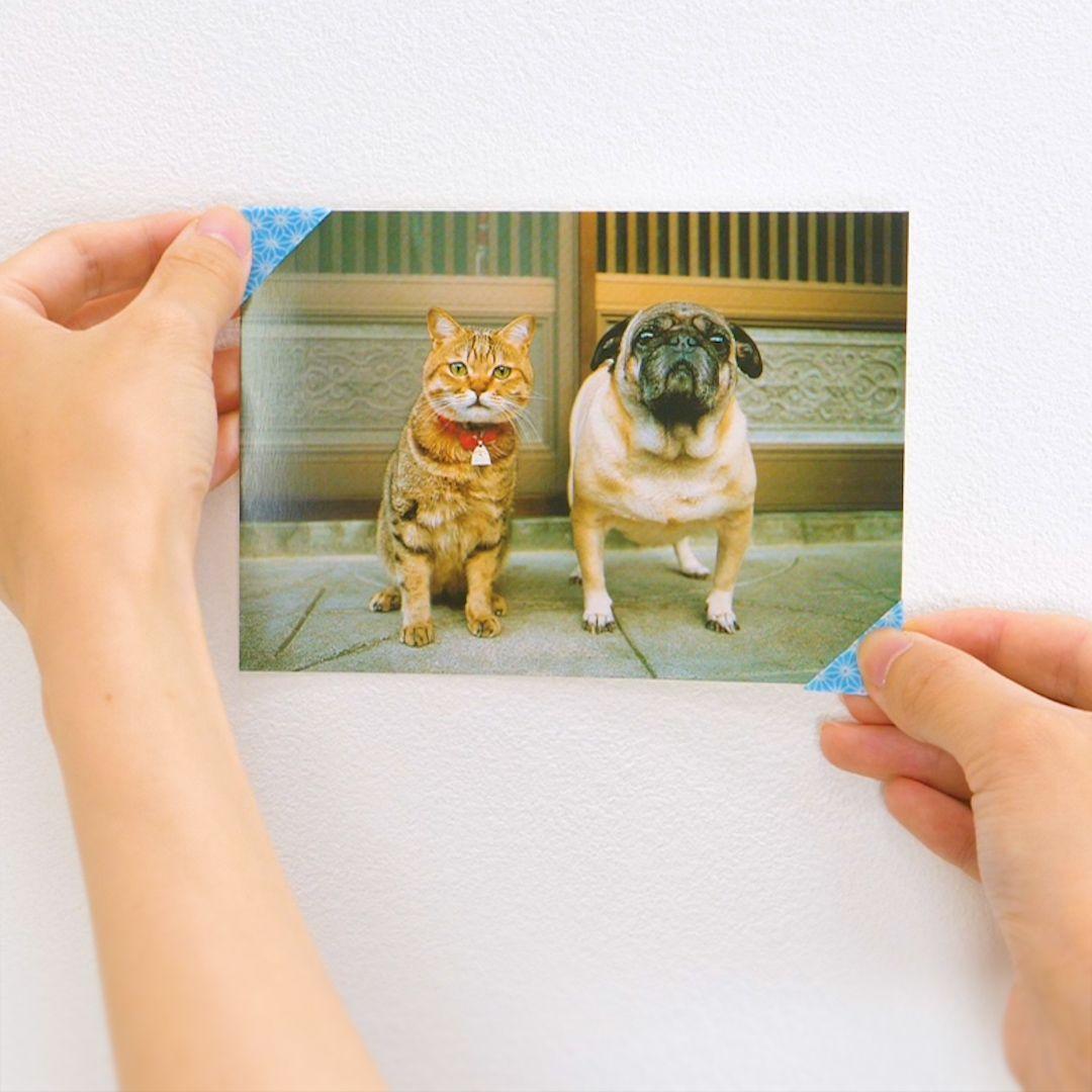 壁にお気に入りの写真を飾りたいけど、壁も写真も痛めたくない…マスキングテープの一工夫で、そんな願いにこたえます!カスタマイズ次第でしおりとしても使える♪