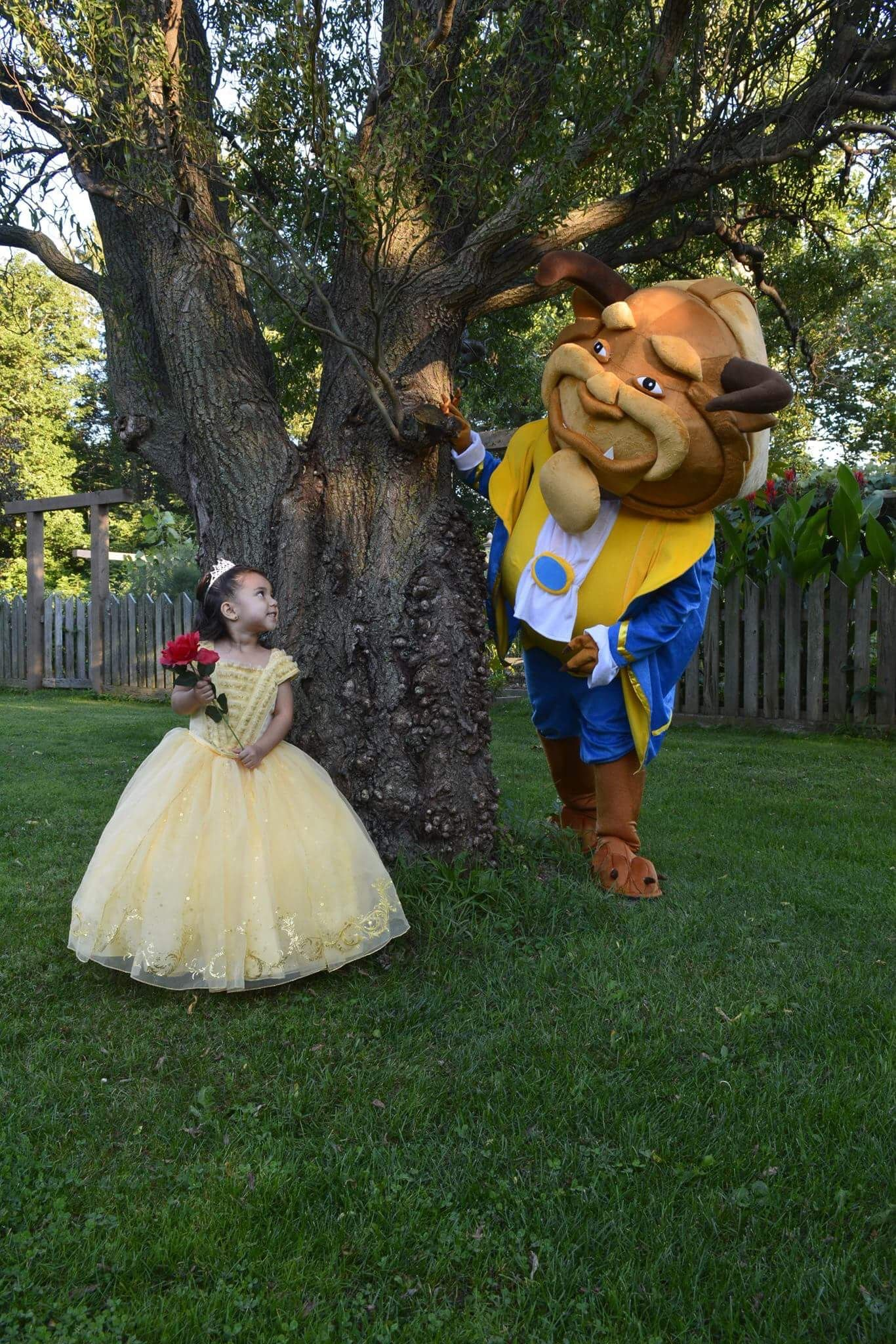 Pin by claudia tkm on beauty and beast rd birthday party