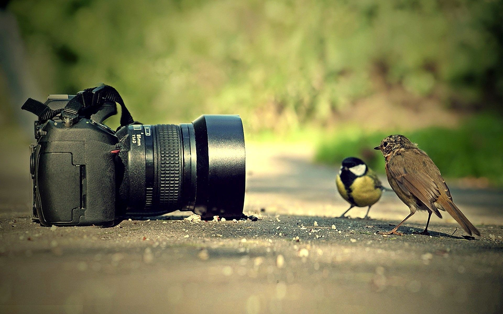 दुनिया के 10 Famous photographer