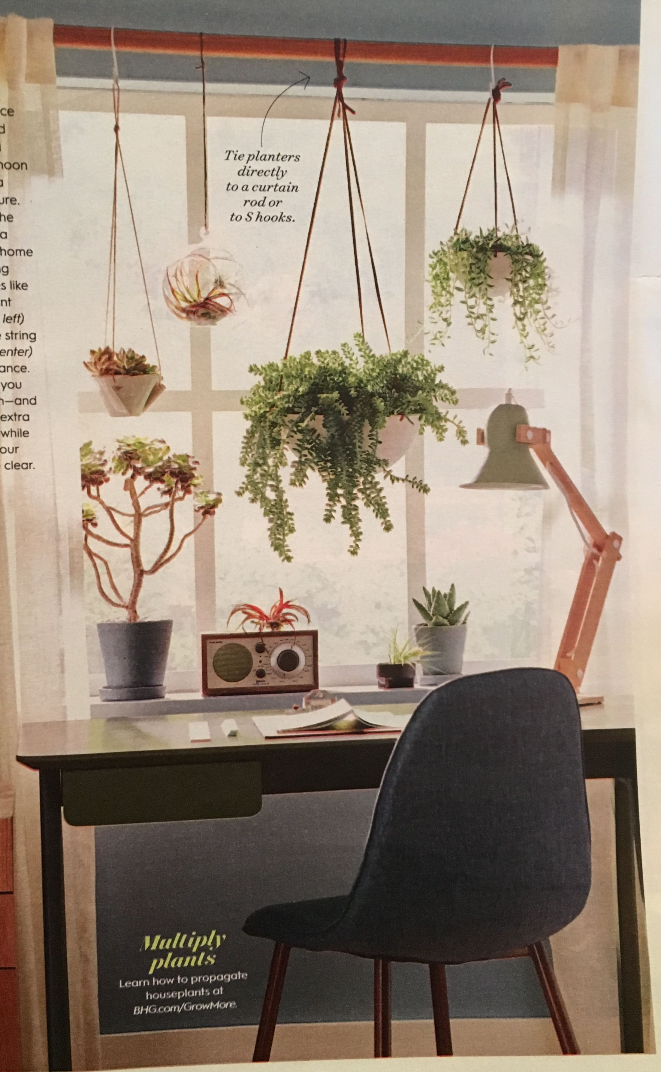 Hang Plants From Curtain Rod Sun Room Library Idea Room With