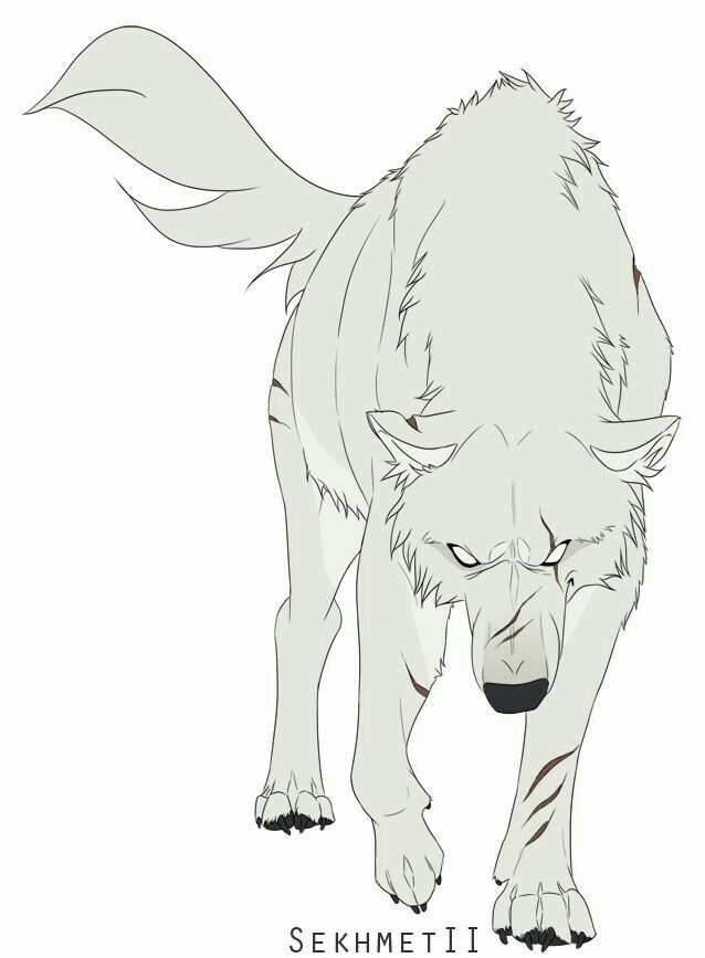Pin de _flannel_queen en Wolves | Pinterest | Lobos, Dibujo y Lobo anime