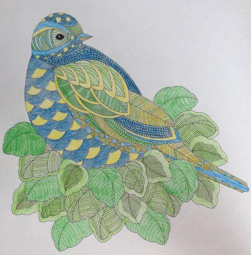 Bird In Leafy Surroundings From Millie Marottas Animal Kingdom