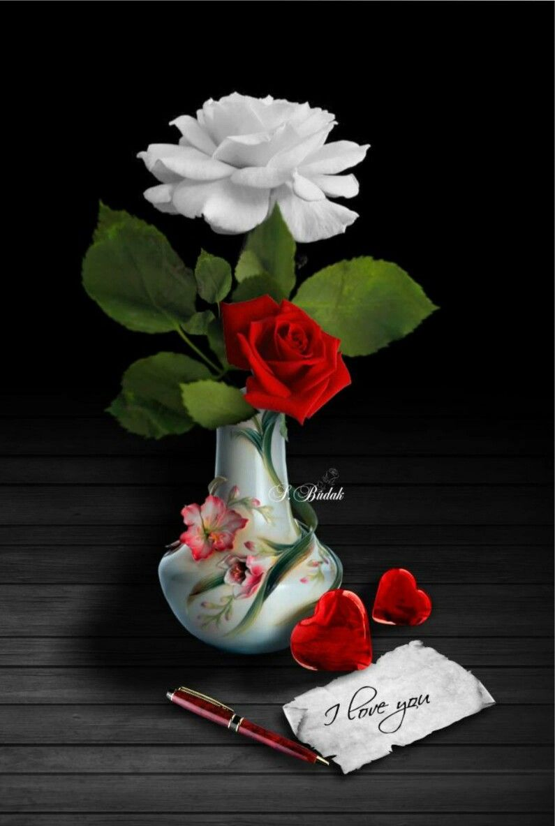 I Love You Beautiful Flowers Beautiful Roses Flower Heart