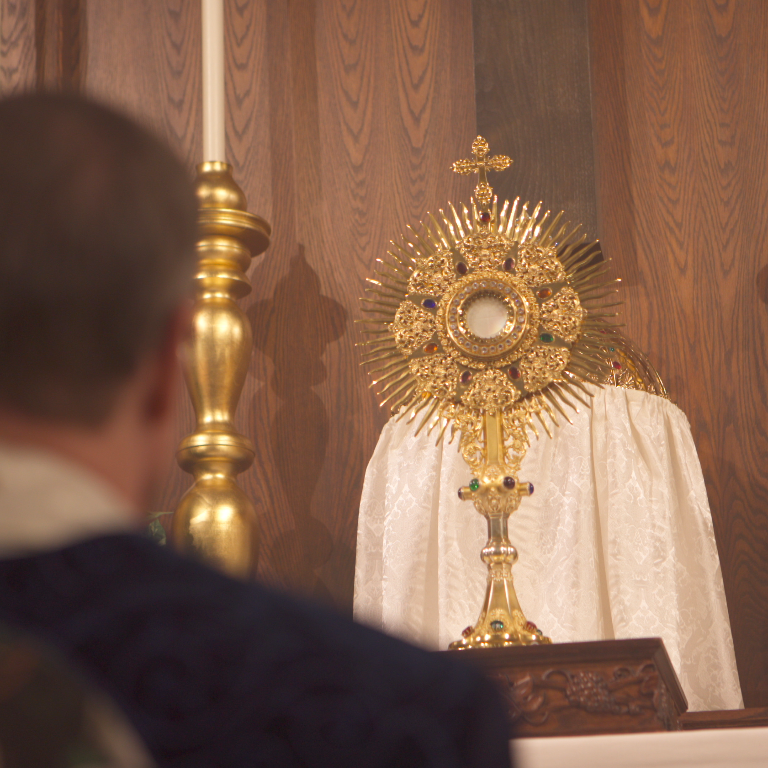 Servants Of The Holy Family Catholic Church Traditional Latin Mass And Seminary Traditional Cathol Holy Family Catholic Catholic Church Traditional Catholic
