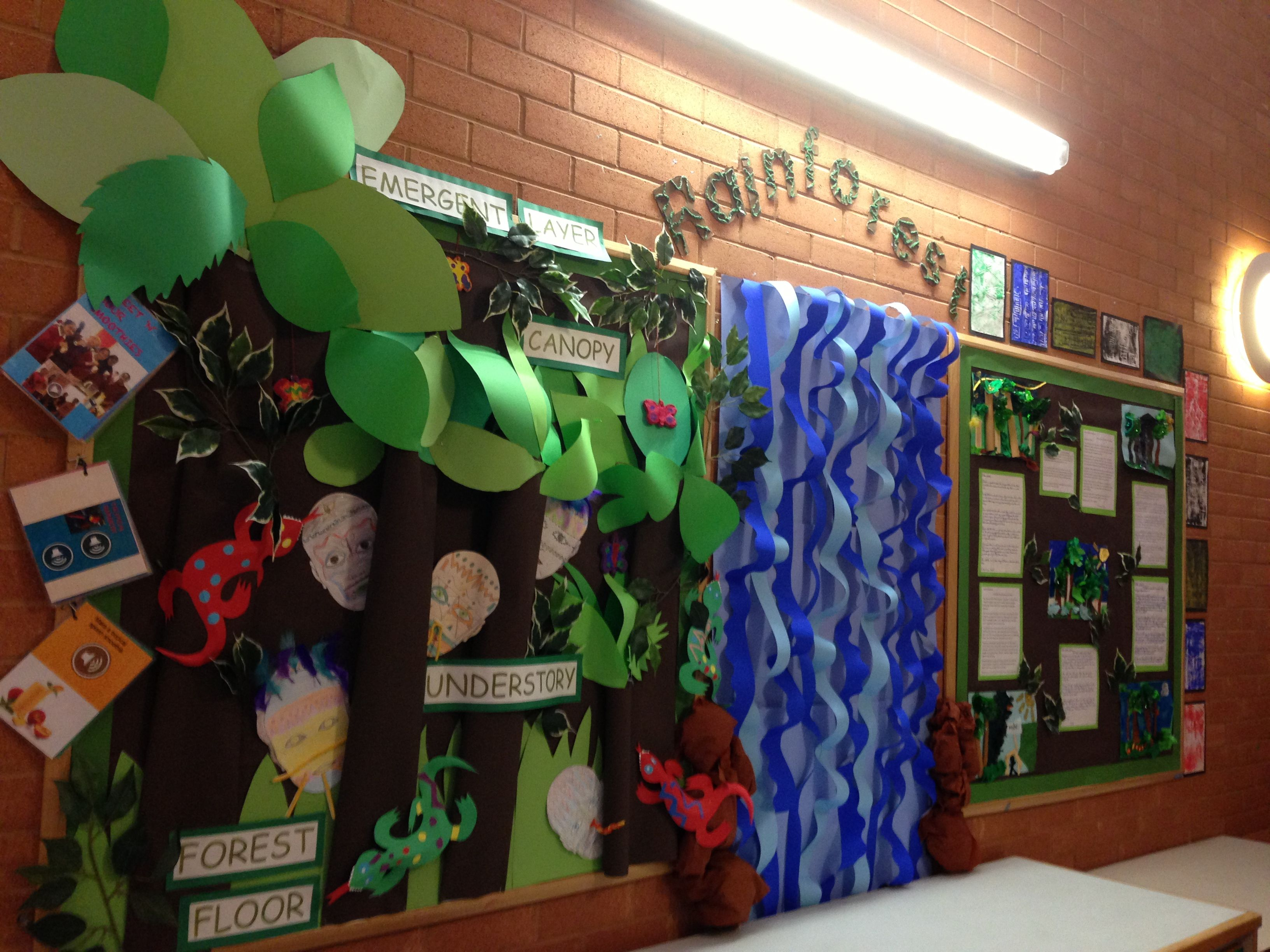 Rainforest Theme Classroom Ideas ~ My rainforest classroom display ocean and land theme