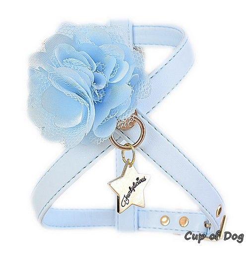"Harnais chien Funkylicious ""New Flower"" - Bleu https://www.cupofdog.fr/collier-harnais-chihuahua-petit-chien-xsl-243.html"