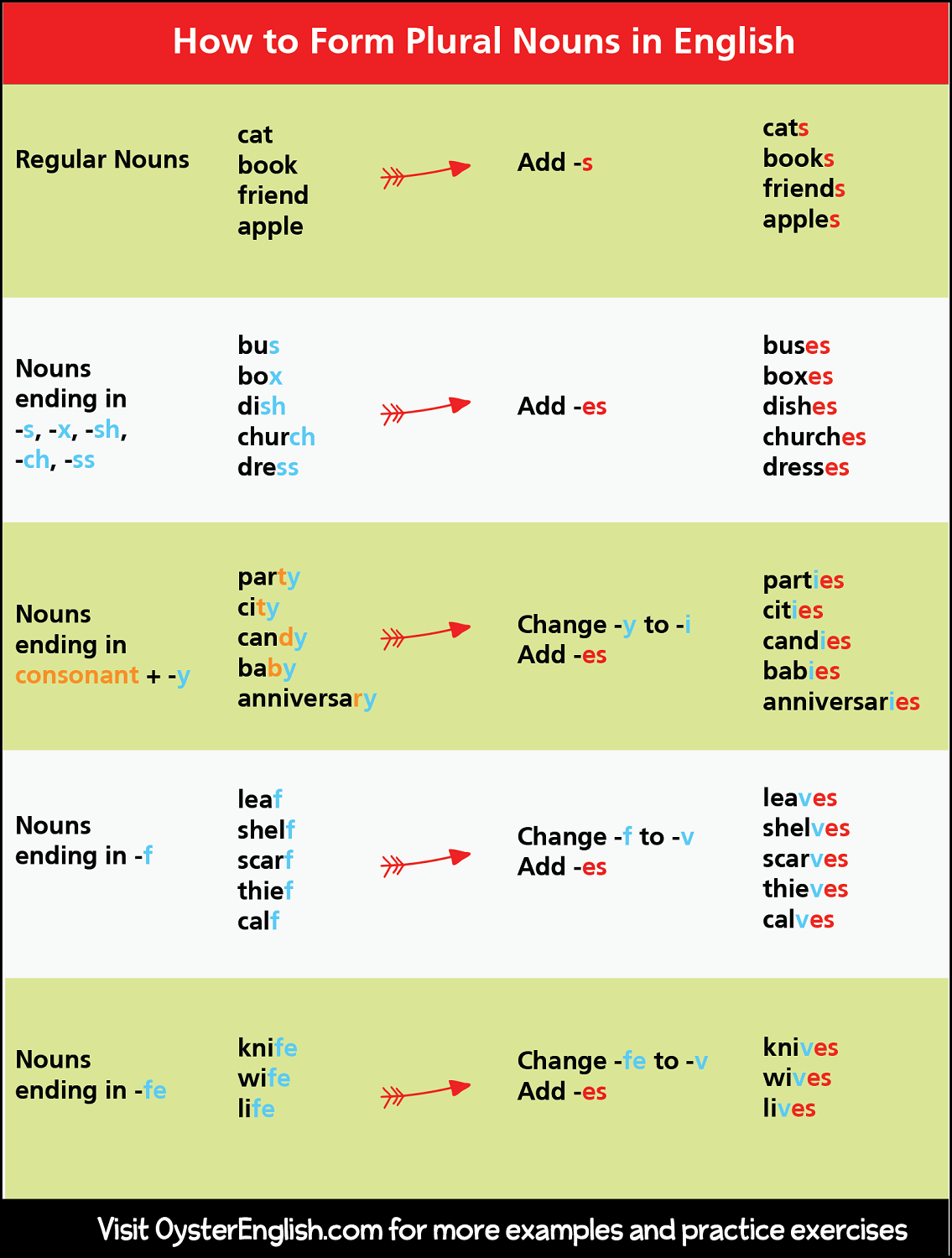 Learn More About How To Form Plural Nouns And Exceptions
