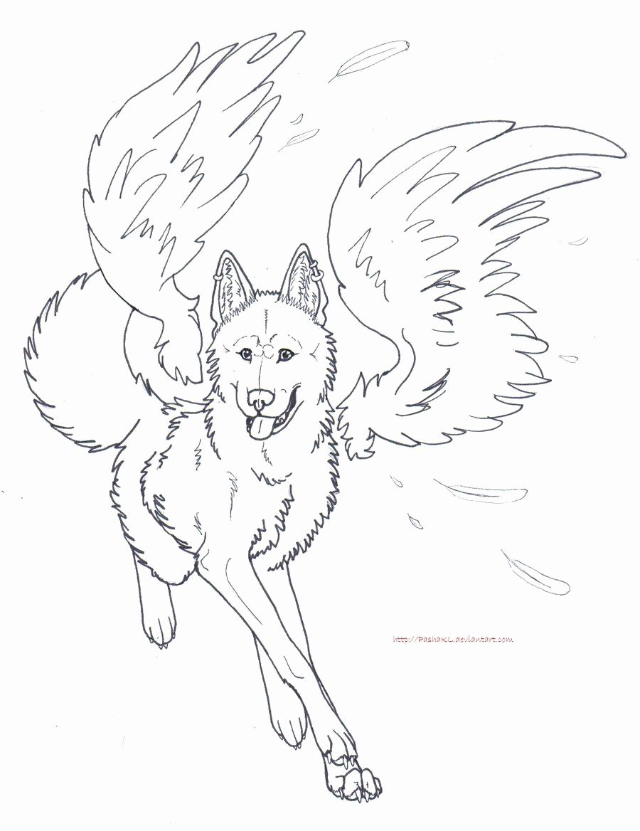 29 Best Of Photos Of Wolf Coloring Pages Printable  Detailed